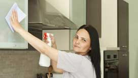 How to clean refrigerator, oven, microwave and dishwasher faster